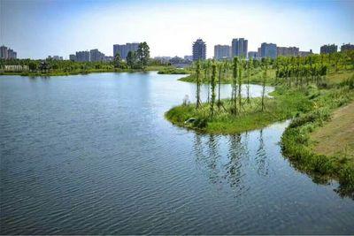 眉山湿地公园水生态工程