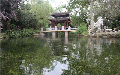 龙山湿地公园水生态修复工程