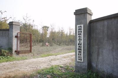 华阳苗圃基地