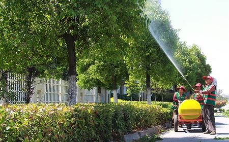静康路二段绿化养护工程