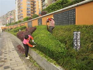 成达家园绿化养护工程